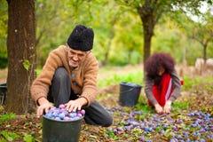 Hogere landbouwer en zijn dochter Royalty-vrije Stock Afbeeldingen