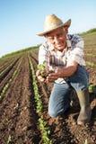 Hogere landbouwer op een gebied Stock Foto