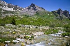 Hogere Maira-vallei die - naar de Maurin-pas stijgen royalty-vrije stock foto's