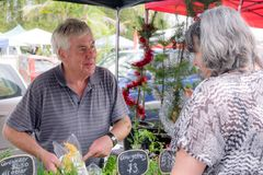 Hogere mannelijke kweker bij landbouwersmarkt het glimlachen en organisch tonen stock afbeelding