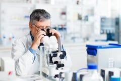 Hogere mannelijke onderzoeker die wetenschappelijk onderzoek naar een laboratorium uitvoeren Stock Afbeeldingen