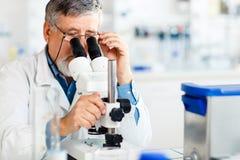 Hogere mannelijke onderzoeker die wetenschappelijk onderzoek naar een laboratorium uitvoeren stock foto