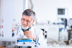 Hogere mannelijke onderzoeker in een laboratorium stock foto's