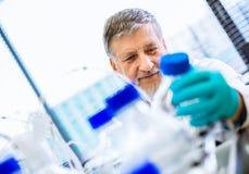 Hogere mannelijke onderzoeker in een laboratorium Stock Foto