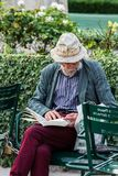 Hogere mens die een boek buiten in de binnenplaats van Koninklijk lezen Royalty-vrije Stock Afbeeldingen