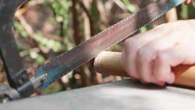 Hogere mens die fluit openlucht maken door handen stock video