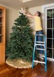 Hogere mens die kunstmatige Kerstmisboom samenbrengen voor KERSTMIS Royalty-vrije Stock Foto