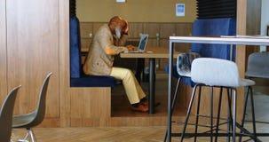 Hogere mens die laptop 4k met behulp van stock footage