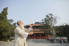 Hogere Mens die Tai Ji voor de Traditionele Chinese Bouw uitoefenen stock afbeeldingen