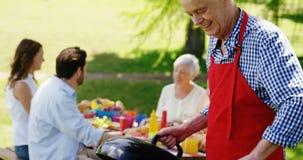 Hogere mens die voedsel op barbecue in het park voorbereiden stock video