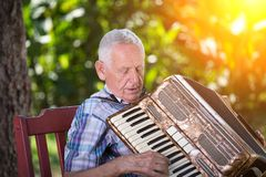 Hogere mens het spelen harmonika stock foto's