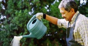 Hogere mens het water geven installaties met gieter in tuin stock footage
