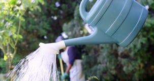 Hogere mens het water geven installaties met gieter in tuin stock videobeelden