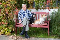 Hogere mens met honden Royalty-vrije Stock Foto