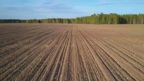 Hogere motie van bos over geploegd gebied met residu's stock videobeelden