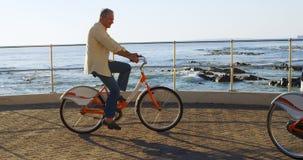 Hogere paar berijdende fiets bij promenade 4k stock footage