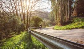 Hogere paar berijdende motor langs bosweg Royalty-vrije Stock Fotografie