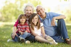 Hogere paar en kleinkinderen in park royalty-vrije stock afbeeldingen