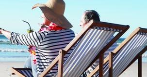 Hogere paarzitting op sunlounger en het hebben van cocktail bij strand stock video