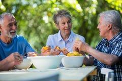 Hogere paren die zaden van abrikozenvruchten verwijderen in tuin royalty-vrije stock foto