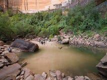 Hogere Smaragdgroene Pool bij Nationaal Park Zion Stock Fotografie