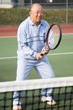 Hogere tennisspeler royalty-vrije stock afbeeldingen