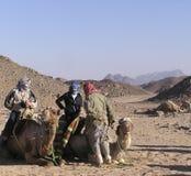 Hogere toerist op kameel 1 Royalty-vrije Stock Foto's