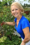 Hogere tuinman en groenten. royalty-vrije stock foto's