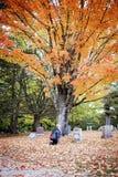 Hogere vrouw die in begraafplaats rouwen stock fotografie
