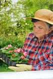 Hogere vrouw die - tuiniert royalty-vrije stock fotografie