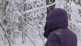 Hogere vrouw die voorbij camera in mooi de winterbos lopen stock video