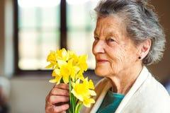 Hogere vrouw door het boeket van de vensterholding van gele narcissen Royalty-vrije Stock Fotografie