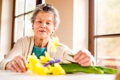 Hogere vrouw door het venster die boeket van gele narcissen schikken Royalty-vrije Stock Foto