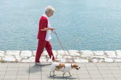 Hogere vrouw en haar hond Stock Foto's