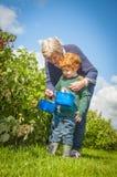 Hogere vrouw en het jonge jongensfruit plukken stock foto's
