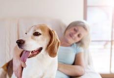 Hogere vrouw en hond Royalty-vrije Stock Foto's