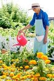 Hogere vrouw het water geven bloemen stock afbeelding
