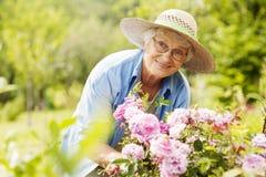 Hogere vrouw in tuin Stock Foto