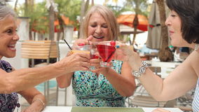 Hogere Vrouwelijke Vrienden die van Cocktails in Bar samen genieten stock footage