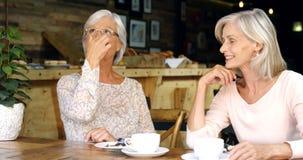 Hogere vrouwen die aan elkaar in koffie 4k spreken stock videobeelden