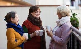 Hogere vrouwen die thee drinken bij balkon Royalty-vrije Stock Afbeeldingen