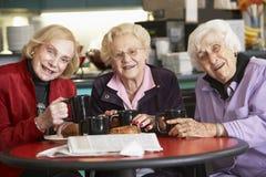 Hogere vrouwen die thee samen drinken Stock Foto's