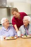 Hogere vrouwen met werker uit de hulpverlening die van maaltijd thuis geniet stock afbeelding