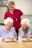 Hogere vrouwen met werker uit de hulpverlening die van maaltijd thuis geniet stock foto