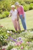 Hogere vrouwen in tuin Stock Foto's