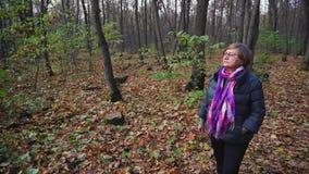 Hogere vrouwengangen in het de herfstbos in een aardige dag stock video