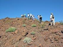 Hogere wandelaars dichtbij de Rivier van Colorado (Si van Arizona Stock Afbeeldingen