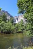 Hogere Yosemite-Dalingen van het Nationale Park van Yosemite Stock Afbeelding