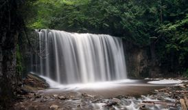 Hoggs faller vattenfallet Royaltyfria Bilder
