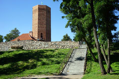 Hogh brick tower Royalty Free Stock Photo
